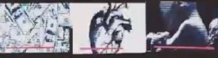 【one ok rock】the beginningのpv意味!出演者や石に隠された謎!細胞、心臓、胎児
